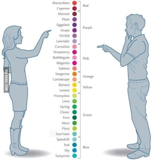 Color Coordination